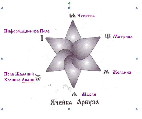 Ячейка Арбуза
