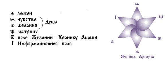 Арбуз - Ядро МИРОЗДАНИЯ
